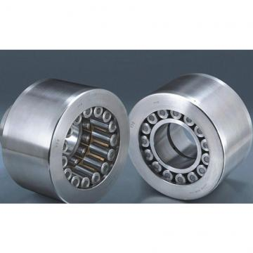 Toyana CX339 Wheel bearings